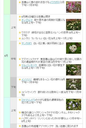 Imagekoyomi3